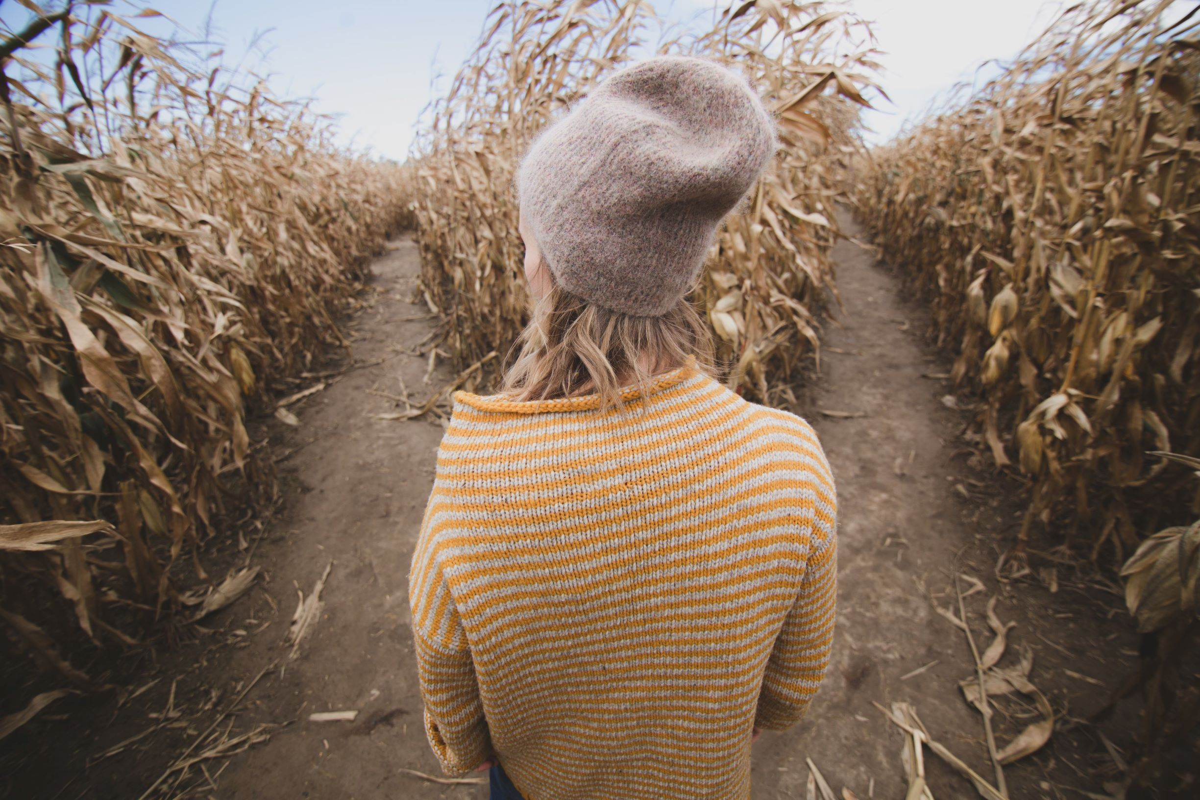 women choosing what path in corn maze